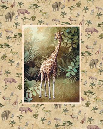 Safari Pictures Poster