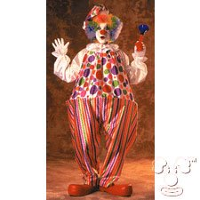 Carnival Adult Costume